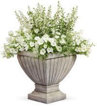 Sheer Delight Planter - For A Sunny Location | Window Box ...