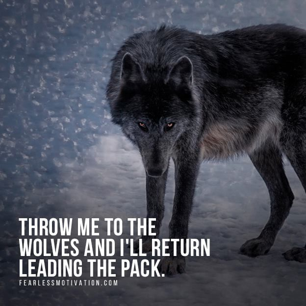 Powerful Quotes Phone Wallpaper 24 Best Images About Wolf Quotes Motivational Wolf Quote