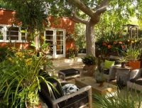 90 best images about drought tolerant Gardens on Pinterest ...