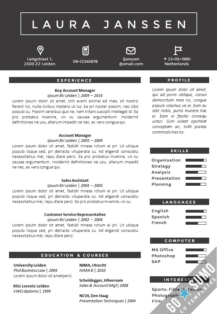 nice cv template word powerpoint