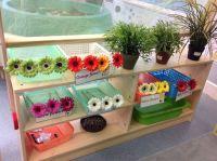 Older Nursery- Role play garden centre | EYFS- The British ...