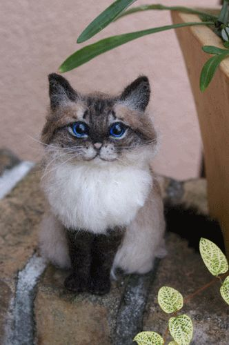 Kitten Doe Het Zelf Needle Felted Cat, Cats And Faces On Pinterest