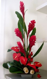 1000+ ideas about Flower Arrangements on Pinterest ...