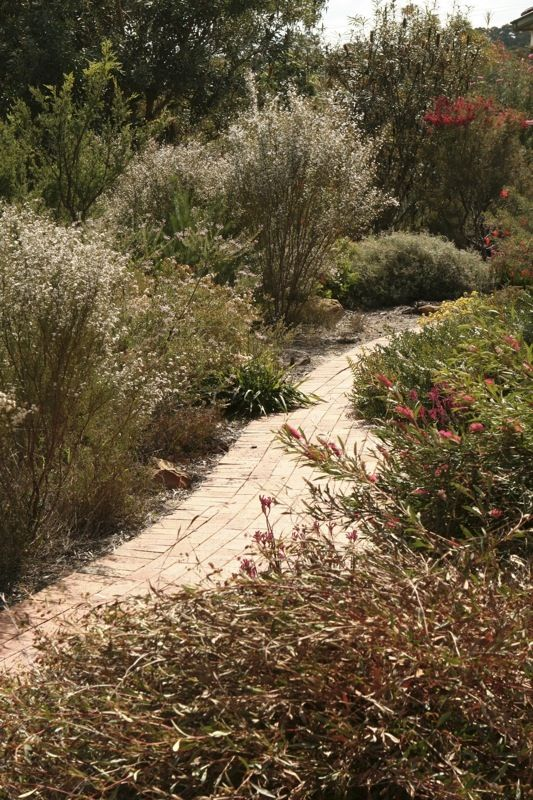 86 best images about native gardens on pinterest