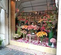 17 Best images about Shop window display on Pinterest ...