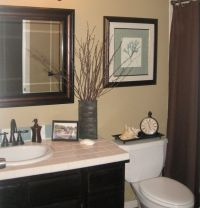 Quick Guest Bath Makeover - Total Cost: $240 - Chocolate ...
