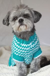 Best 20+ Crochet dog sweater ideas on Pinterest | Small ...