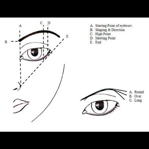 eye makeup diagram