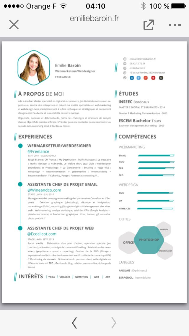 design cv webmarketing