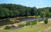 1000+ ideas about Pond Landscaping on Pinterest | Rock ...