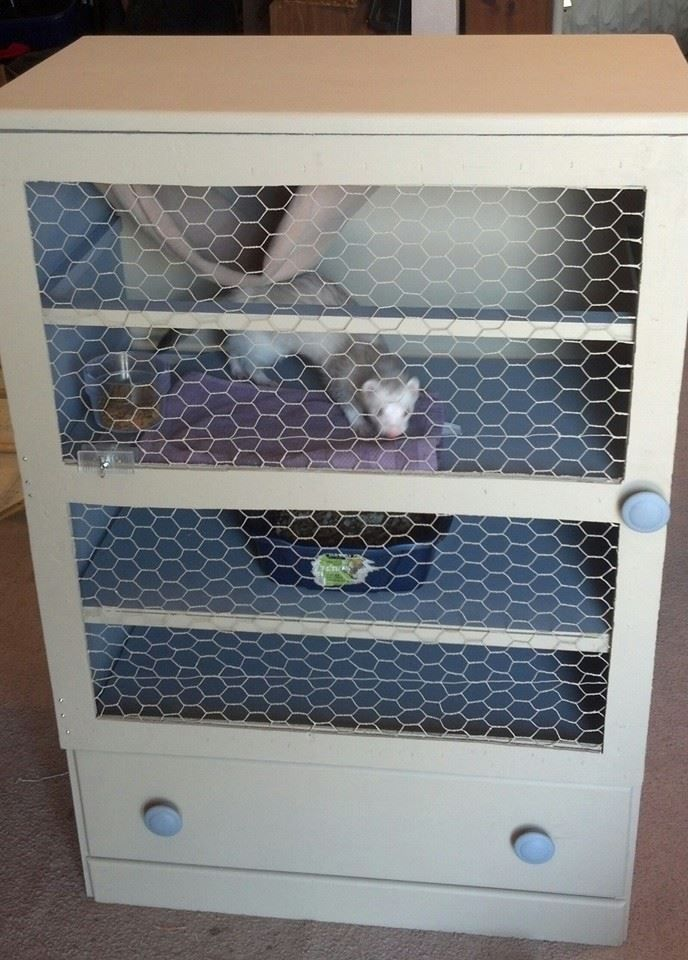 Ikea Hemnes 3 Drawer Dresser Old Dresser Turned Ferret Cage | Cages & Such | Pinterest