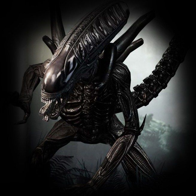 Iphone 7 Blob Wallpaper 17 Best Images About Alien And Predator On Pinterest