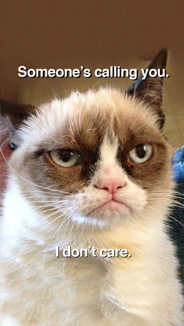 Grumpy Cat Wallpaper Quotes Grumpy Cat Hates Phone Call Sir Puppykins Pinterest