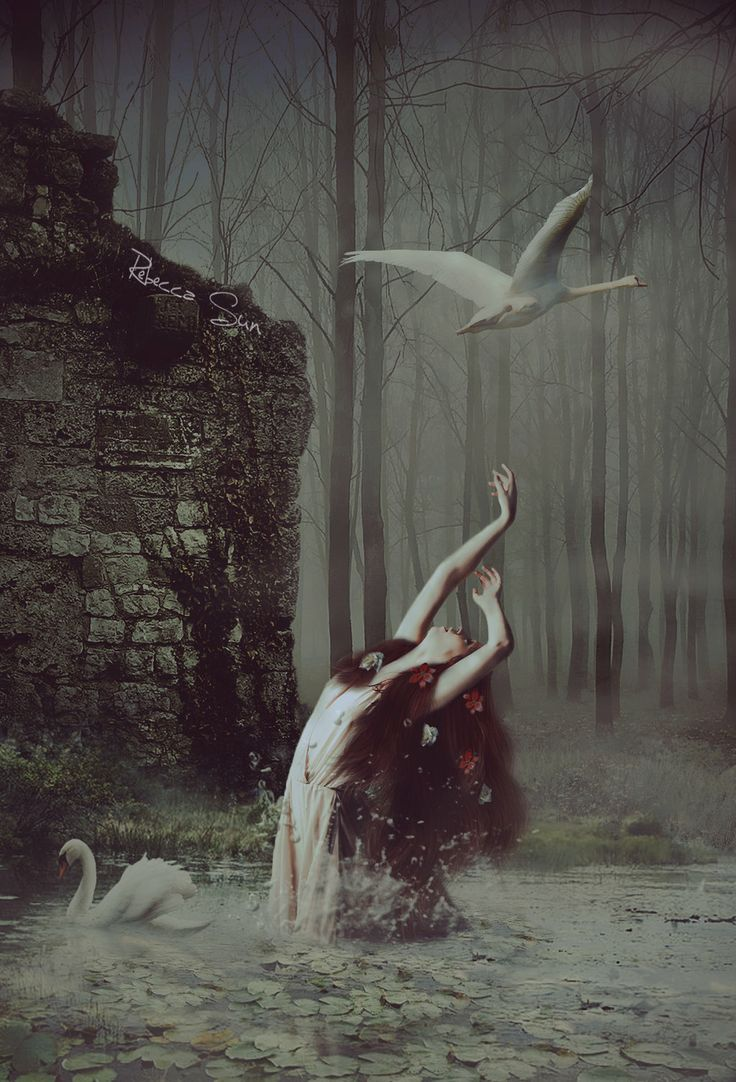 Beautiful Fairy Girl Wallpaper 200 Best Images About Ethereal Swans On Pinterest Swan