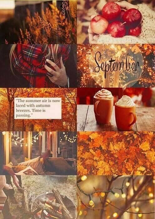 Fall Leaves Watercolor Wallpaper 25 Best October Fall Quotes On Pinterest Hello October