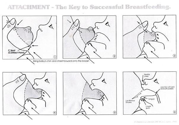 proper latch diagram