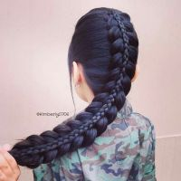 Best 25+ Braids for long hair ideas on Pinterest