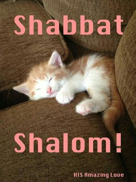 Limits Quotes Wallpaper Shabbat Shalom ♡ Sabbath Pinterest Shabbat Shalom