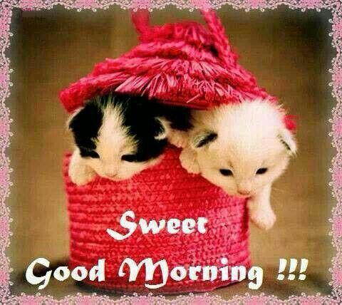 Gud Morning Wallpaper With Cute Baby Gud Mrng Ji Good Morning Pinterest