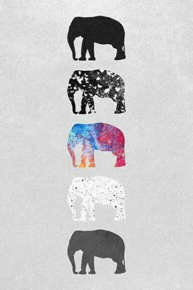 Animal Print Iphone 5 Wallpaper Image Via We Heart It Https Weheartit Com Entry