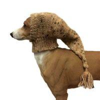 159 best images about Jack Bentley Dogwear on Pinterest ...