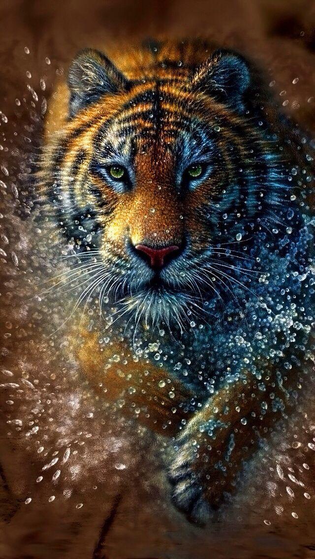 Clemson Tigers Iphone Wallpaper Tiger Iphone Wallpaper Background Iphone Wallpaper
