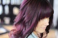 Plum Eggplant Hair Color   www.imgkid.com - The Image Kid ...