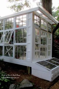 25+ best ideas about Small Greenhouse on Pinterest ...