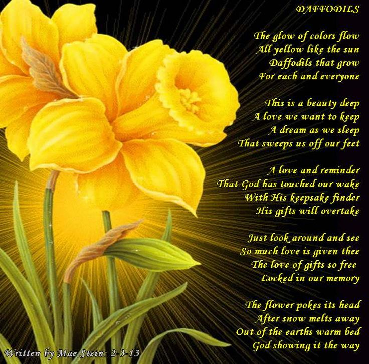 Significant Quotes In The Yellow Wallpaper 31 Best Images About I Love Daffodils On Pinterest May