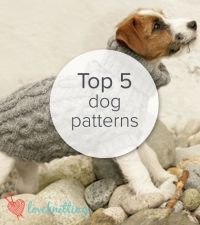 1000+ ideas about Dog Sweater Pattern on Pinterest | Dog ...