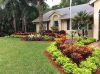 Best 25+ Florida landscaping ideas on Pinterest | White ...