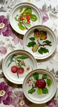 122 best images about ~Portmeirion Collection~ on ...