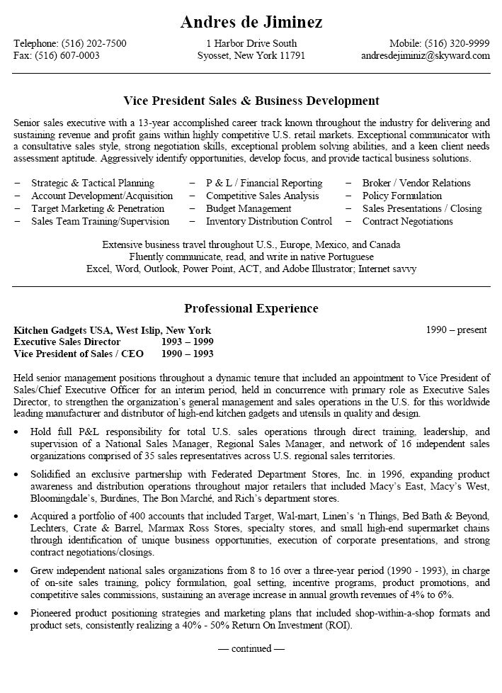 vice president project management resume sample
