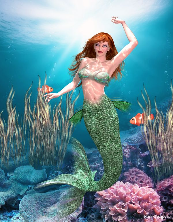 Wallpaper Ideas For Baby Girl Nursery 1254 Best Images About Pisces Mermaids And The Sea On