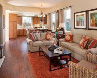 Living Room Burnt Orange Couch Design, Pictures, Remodel ...