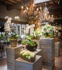 Best 25+ Flower shop displays ideas only on Pinterest ...