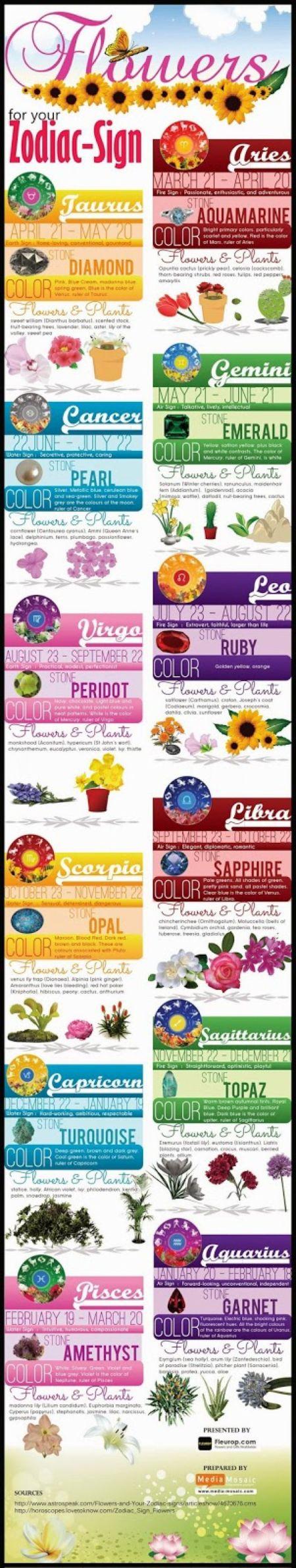 Zodiac Signs Corresponding Body Parts