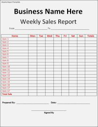 Sales reports are key factors that analyse how well your ...