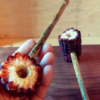 1000+ ideas about Corn Cob Pipe on Pinterest | Tobacco ...