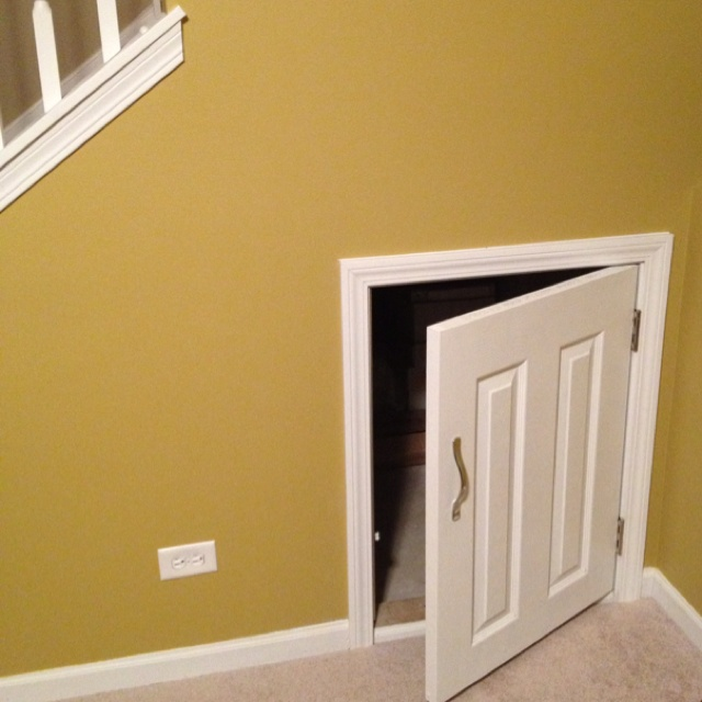 Stairway Door Access Door For Under Stair Storage | Stairs | Pinterest