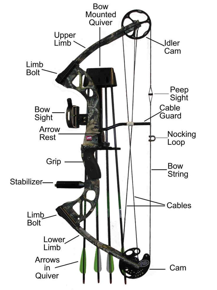 archery setup diagram