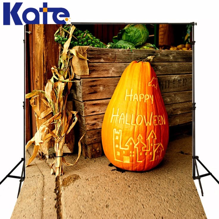 1000 ideas about halloween photography backdrop on