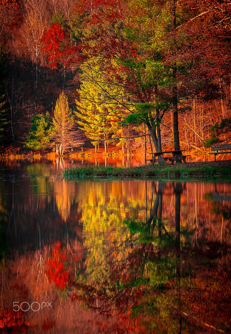 Falling Leaves Wallpaper Screensavers 493 Best Images About Fall Splendor On Pinterest Country
