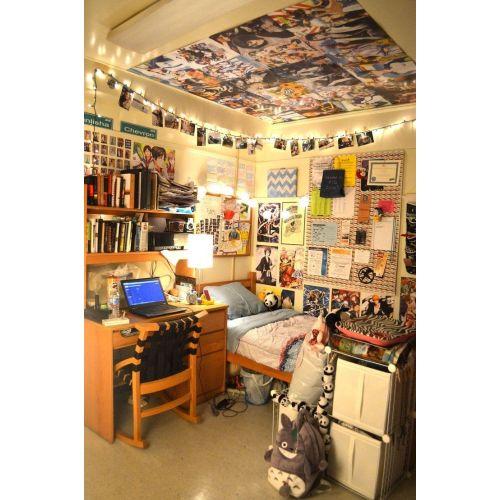 Medium Crop Of Ideas For College Dorms