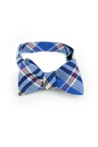 314 best images about Bow Ties on Pinterest | Tie a bow ...