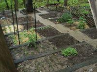 1000+ images about Hillside Vegetable Garden on Pinterest ...