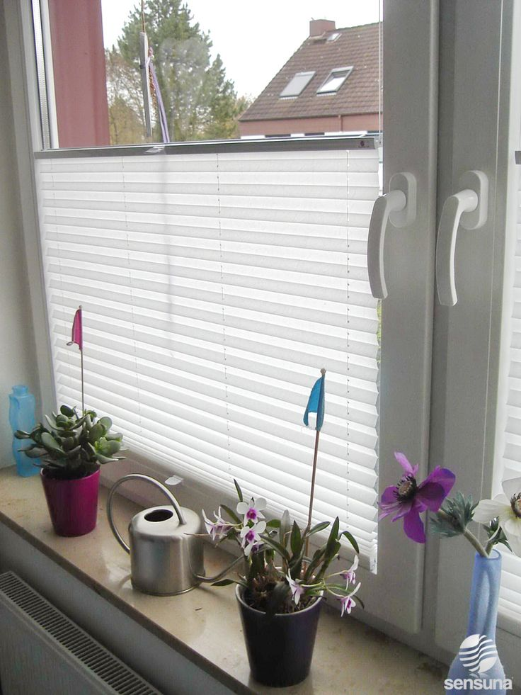 1000 Images About Plisy Pleated Blinds On Pinterest Hunter Douglas Wooden Windows And Window - Plissee Balkontür