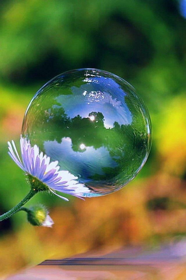 Cute Wallpaper Recycling 1000 Images About Bubbles On Pinterest Soap Bubbles
