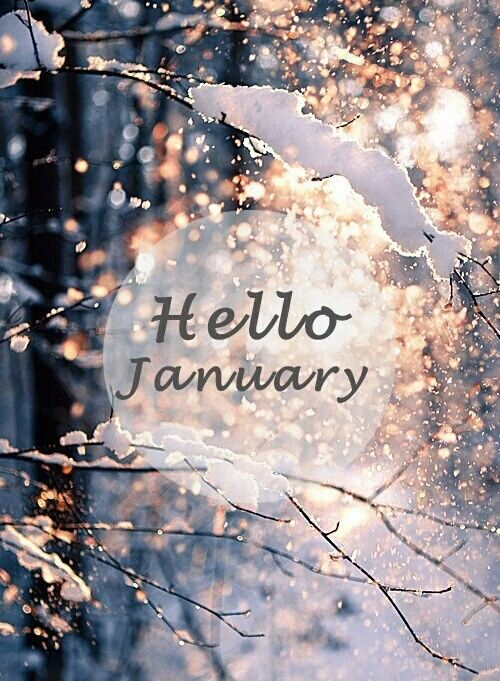 Hello Fall Iphone Wallpaper 17 Best Images About ★f R Fun★ Ꮒ ℓℓ иe ϻ иth On