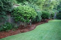 Cheapest Landscaping for Long Narrow Backyards | Our ...